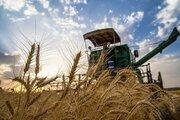 بیش از سه هزار میلیارد خرید توافقی محصولات کشاورزی قزوین