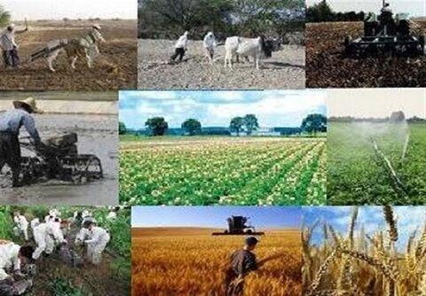کار روستایی