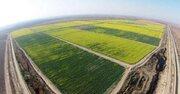 مطالبه کشاورزان خوزستانی برای اجرای فاز دوم طرح 550هزار هکتاری توسط موسسه جهاد نصر+سند