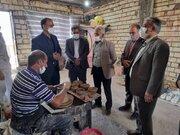 افتتاح ۳ طرح صنایعدستی و گردشگری در روستای دستگرد بیرجند